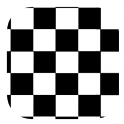 Coques Transparentes avec motif